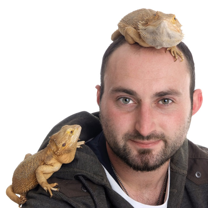 Bearded Dragon and Reptile Photography by Sammy Southall Photography