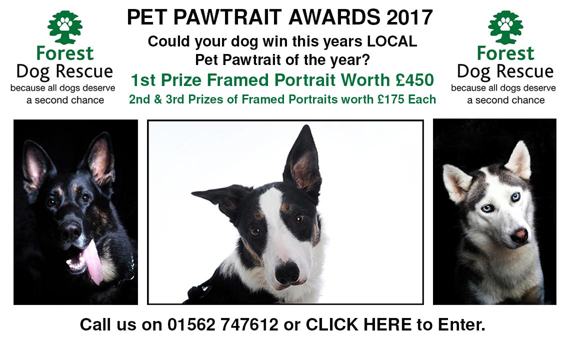 pet-pawtraits-worcestershire-2017